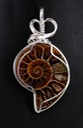 fossil ammonite wire wrapped sculpted sterling silver cab cabochon pendant jewelry